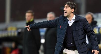 Serie A Genoa, Juric: «Pavoletti? Non parlo di mercato»