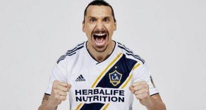 LA Galaxy, Ibra a colloquio con Schelotto: