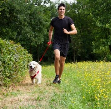 Arriva la Bob Martin Dog Run: corri con il tuo cane all'Idroscalo di Milano!