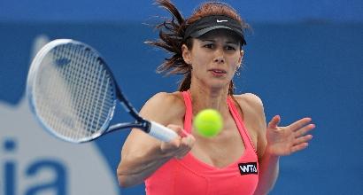 Wta Sydney: Errani eliminata, Pironkova in semifinale