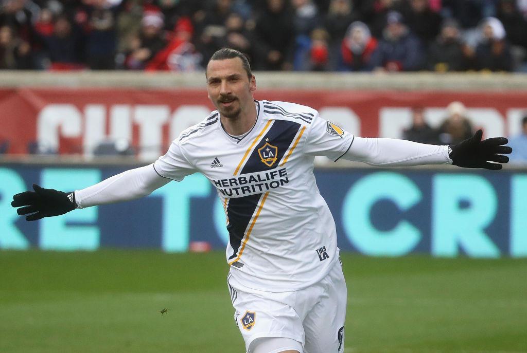 Anche il Re di Los Angeles Zlatan Ibrahimovic ha un gemello diverso, ma in un altro sport...
