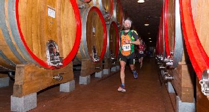 Tra vigneti e vini con la frontale accesa: ecco il Valtellina Wine Trail