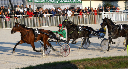 Ippica, l'Orsi Mangelli è francese: vince Charly Du Noyer