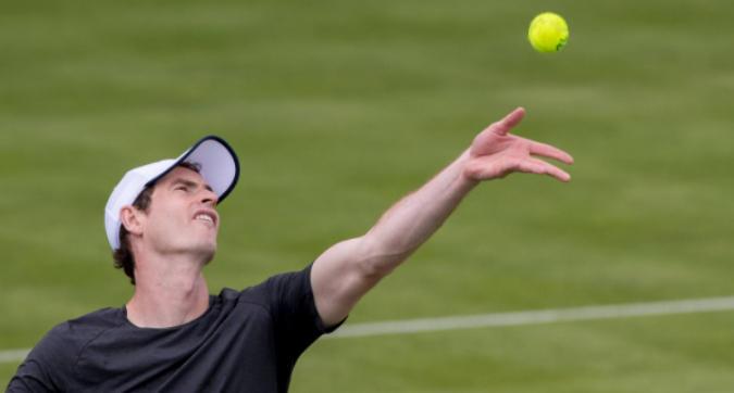 Andy Murray si allena sull'erba