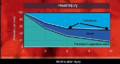 Il grafico pubblicato dal medico