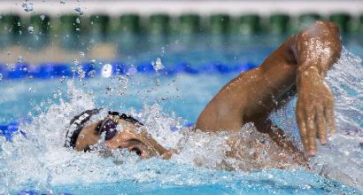 """Nuoto, l'avvocato del dottor Porcellini: """"Magnini e altri atleti estranei all'inchiesta doping"""""""