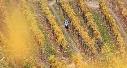 Tutto pronto per il Valtellina Wine Trail... nonostante il maltempo