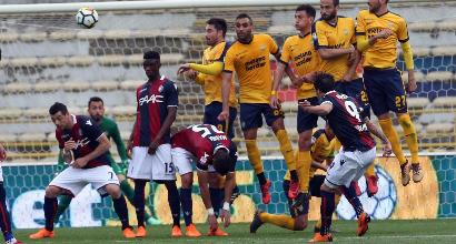 Bologna-Hellas Verona, le formazioni ufficiali: torna Destro