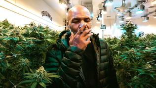 "Myke Tyson ancora shock: ""Fumo 40mila dollari di marijuana al mese"""