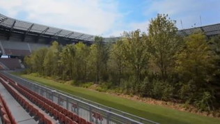 Klagenfurt, lo stadio è pieno di... alberi