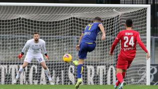 Verona-Fiorentina 1-0: la fotostoria del match