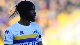 Mistero Gervinho: quando va da Xavi? Il Parma va dalla Fifa