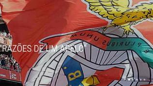 "Benfica, le accuse poi l'appello: ""Mandate arbitri stranieri"""
