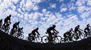 """Il ds della Bardiani: """"Non insultate i ciclisti, si allenano"""""""