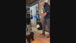 """Materazzi punge ancora Ibra: """"Tu non puoi"""""""