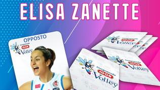 Novara, un altro ritorno:Zanette affiancherà Smarzek