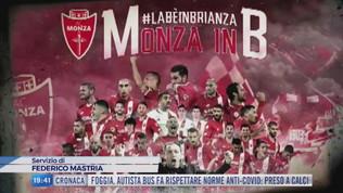 Monza, Reggina e Vicenza festeggiano la promozione