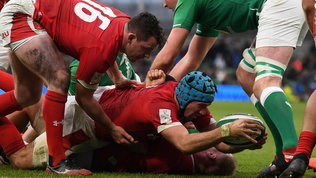L'Autumn Nations Cup debutta su Mediaset: questa sera Irlanda-Galles