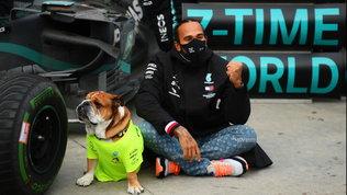 """Hamilton risponde ai detrattori: """"Vinco per la Mercedes? Merito rispetto"""""""