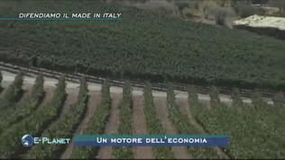 Agricoltura: difendiamo il made in Italy