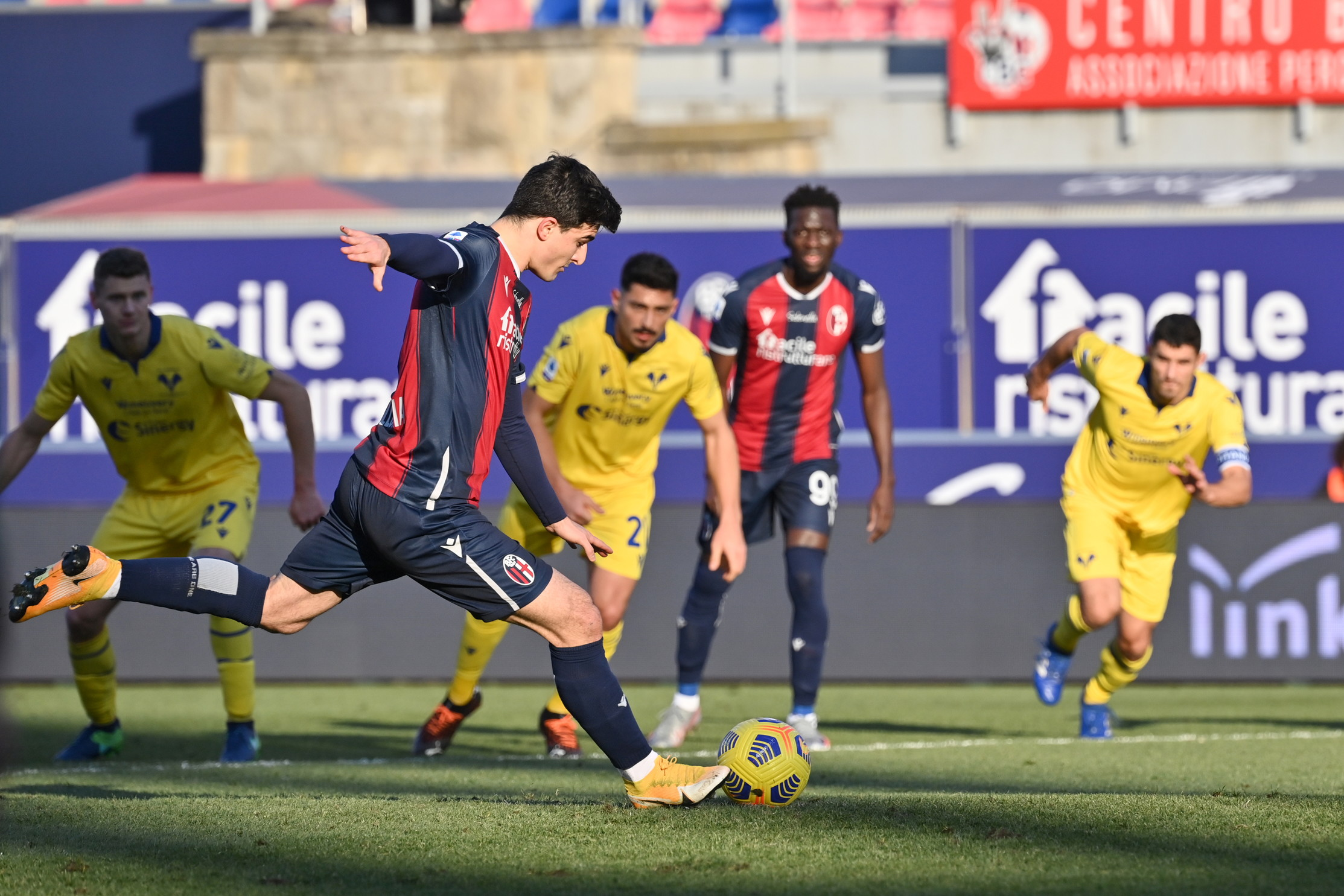 Bologna-Verona 1-0, le migliori immagini della sfida del Dall&#39;Ara.<br /><br />
