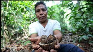 Correre per proteggere la foresta amazzonica