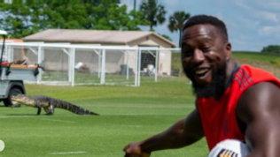 Toronto, c'è un ospite a sorpresa: un coccodrillo all'allenamento