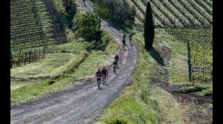 Chianti Ultra Trail: fascino internazionale, vittorie tricolori!