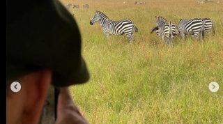 "Icardifa ""sognare"" i tifosi della Juve: foto alle zebre in Africa"
