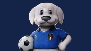 Un cucciolo di pastore maremmano-abruzzese: ecco la mascotte azzurra