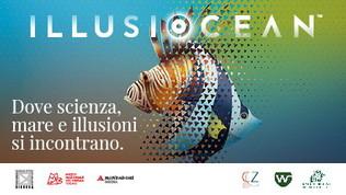 IllusiOcean, la mostra per sensibilizzare sull'inquinamento dei mari