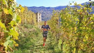 Valtellina Wine Trail: CassandraCrossing… tra le Alpi!